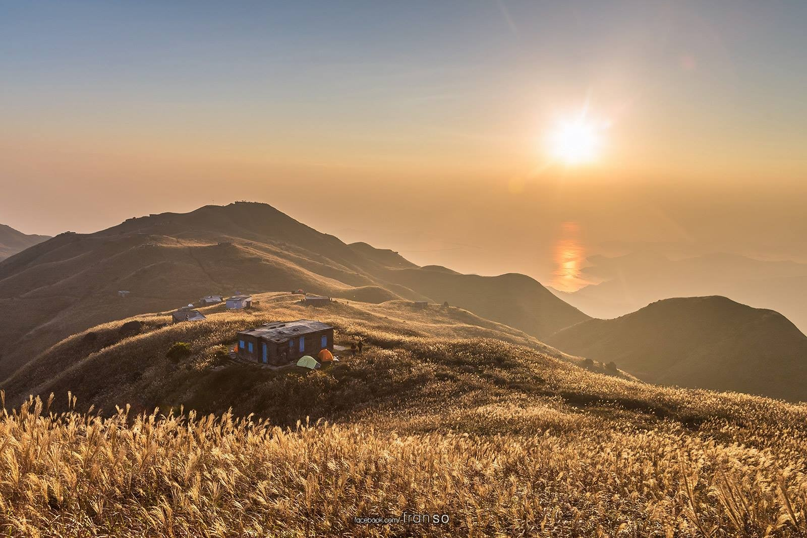 Landscape | Hong Kong | Gold Sunrise  | Golden Grass